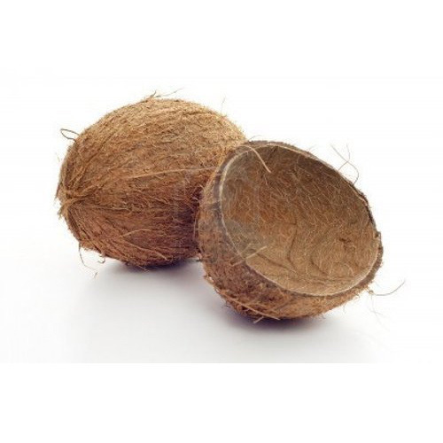 Raw 100% Coconut Shell