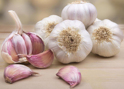 White and Fresh Garlic