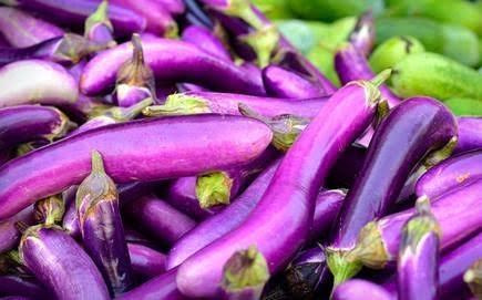 Farm Fresh Natural Brinjal