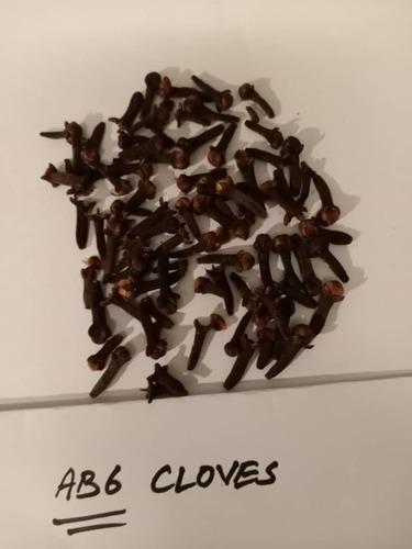 Nutritious Dry Black Cloves