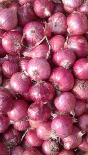 Natural Fresh Red Onion