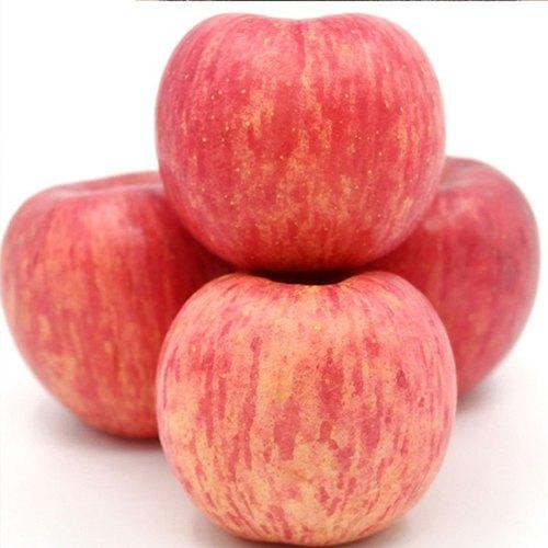 Farm Fresh Delicious Apple