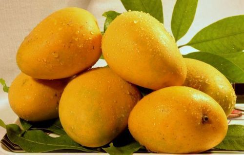 A Grade Fresh Mango Fruits