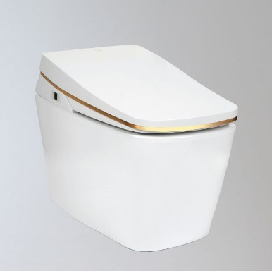 Integrated Toilet Tankless Electronic Bidet (TCB 9100G)