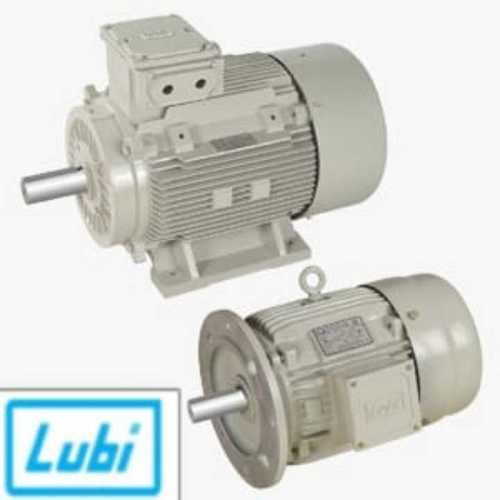 Foot Mounted And Flange Mounted Ie2 Industrial Motor (Lubi)