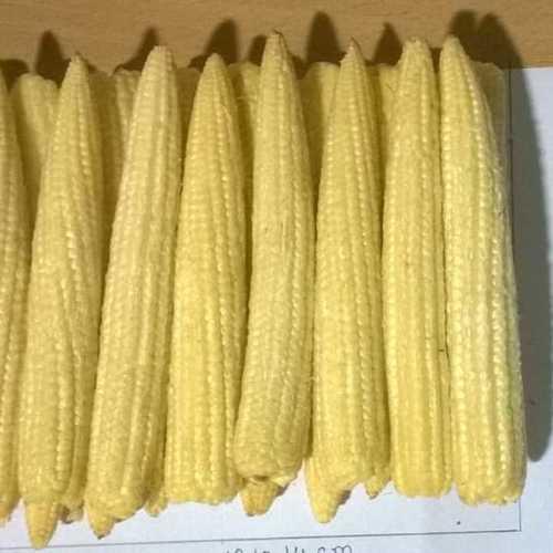 Frozen Baby Corns