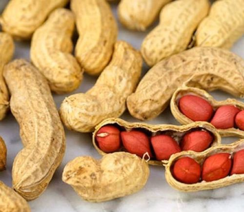 Export Quality Raw Groundnuts