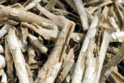 Natural Dried Cascarilla Bark