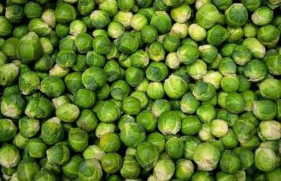 Round Green Fresh Brussels Sprouts