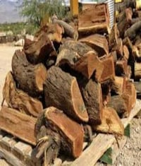 Natural Dry Fire Wood
