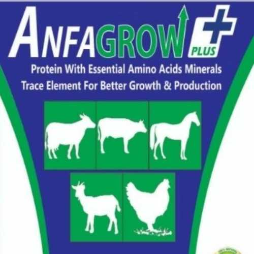 Anfa Grow Plus Cattle Feed Efficacy: Promote Growth