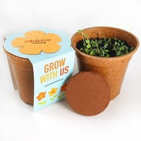 Sprouter Grow Kit