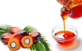 100% Purity Crude Palm Oil
