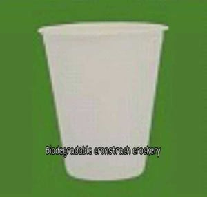 Biodegradable Cronstrach Glass And Cup