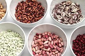 Organic Dry Kidney Beans Certifications Sgs Price 600 Usd Metric Ton Id 6206265