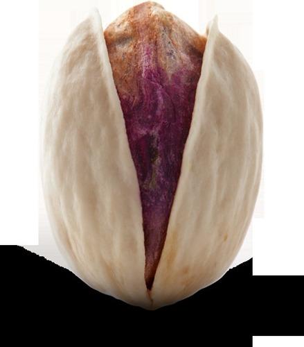 Kale Ghouchi Iranian Pistachio