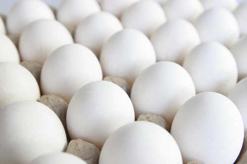 High Quality Poultry Eggs