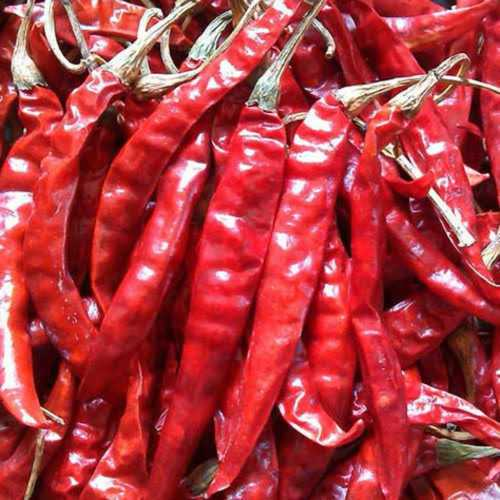 Fresh Dry Red Chilli