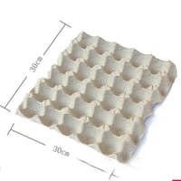 Biodegradable Paper Pulp Egg Tray