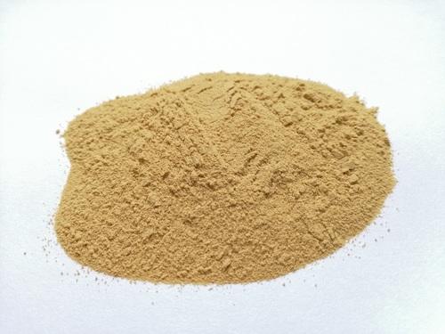 Brewers Yeast Powder at Price Range 700.00 - 800.00 USD/Metric Ton in Kiev  | Maksym Zhuravskyi