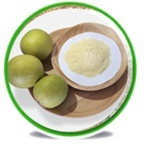 Plant Extract-Monk fruit extract, Mogroside