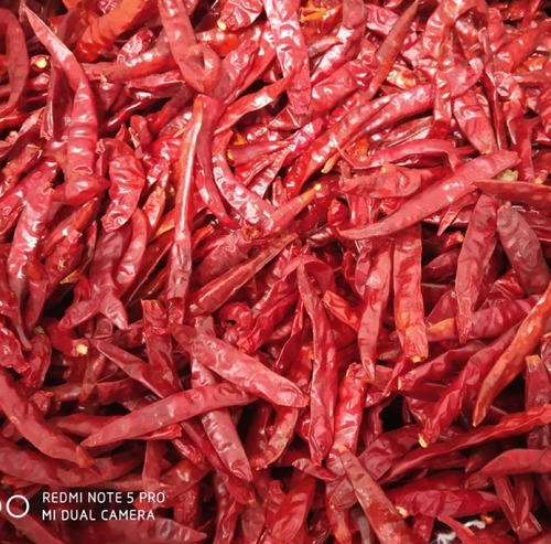 Dried Stemless Red Chilli