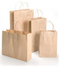 Biodegradable Paper Carry Bags