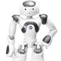 Fully Digital Humanoid Robot