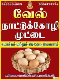 Healthy Country Chicken Egg