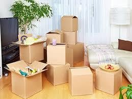 Domestic Packers Movers Service
