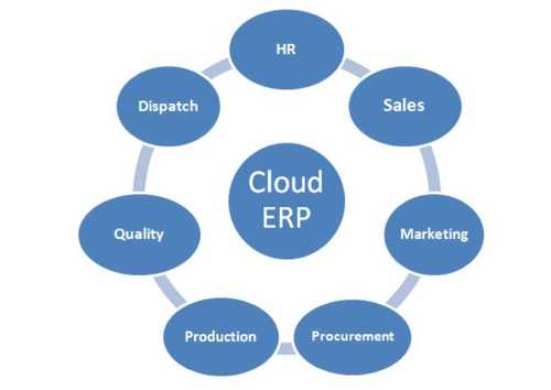 ERP Software Service Provider