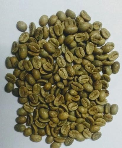 Green Color Coffee Beans