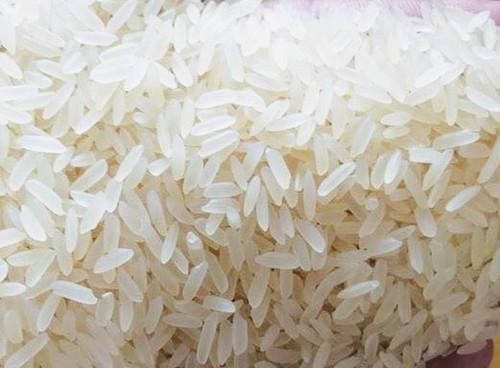 Common Medium Size Parmal White Rice