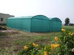 Shade Net House for Seasonal Vegetable and Flower Cultivation