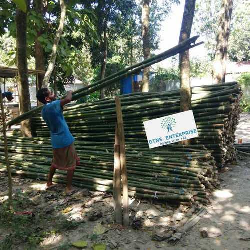 18 Feet Bamboo Pole