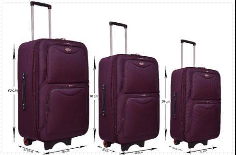 Rainbow Platina Purple Luggage Trolley Bag