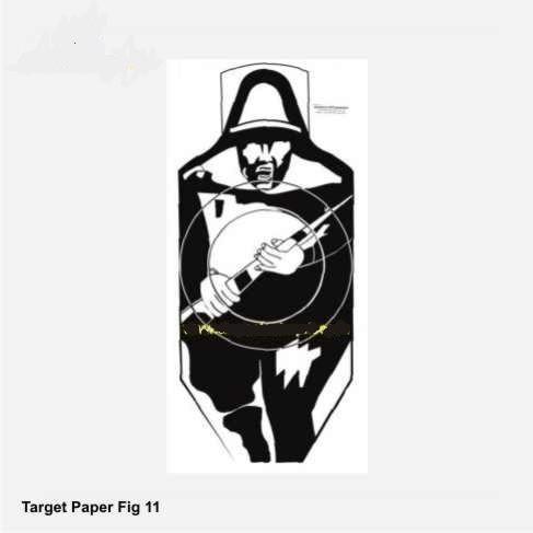 Target Paper Fig 11 (Black)