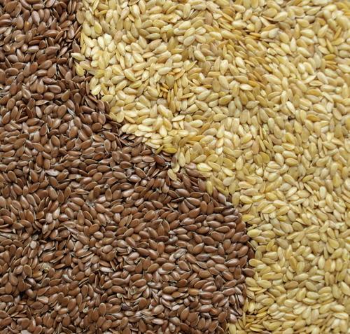 Organic Grade A Brown Flax Seeds