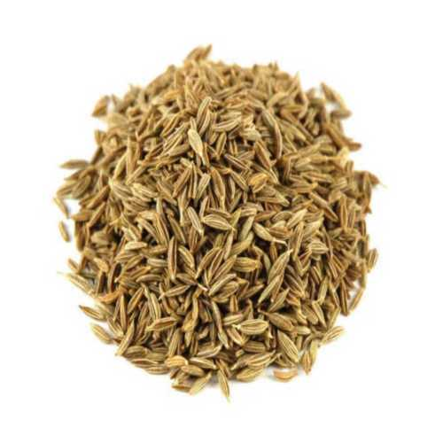Green Cumin Seed For Improve Digestion