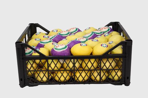 Common Cultivation Type Fresh Citrus