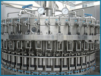 Rotary Rinsing Filling Capping Machine