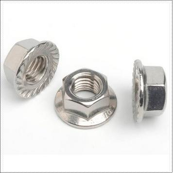 Anti Corrosive Hex Flange Nut
