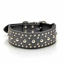 Designer Pet Collars For Animals Use