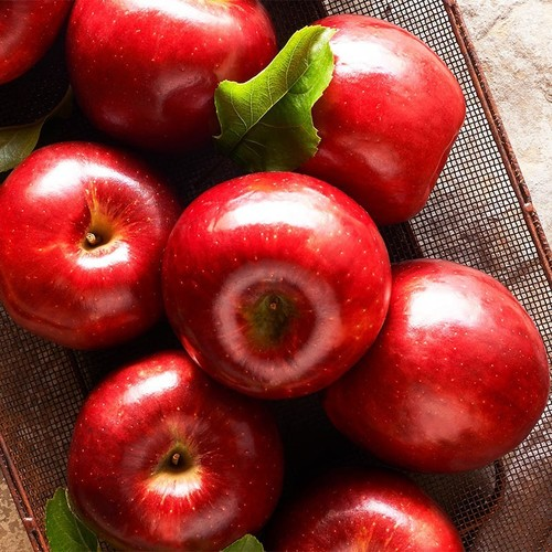 Red Delicious Fresh Apple