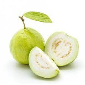 A Grade Fresh Guava