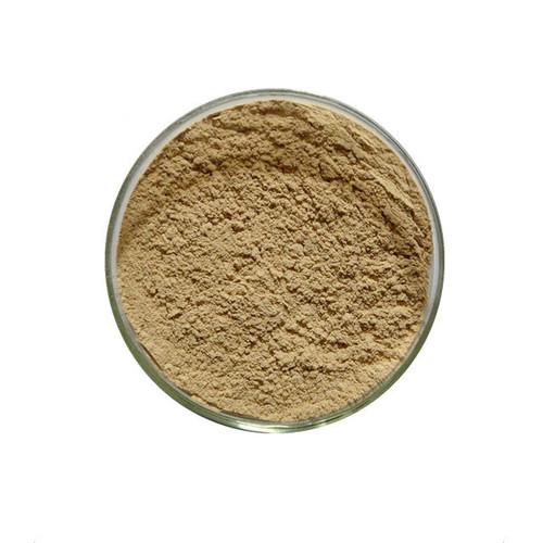 Autolyzed Yeast Extract