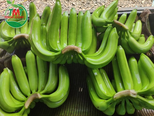 Fresh Cavendish Banana (Green)