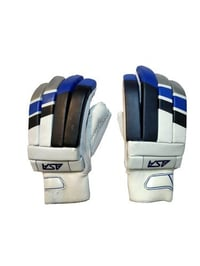 Cricket Batting Sports Gloves