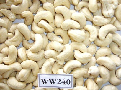 Natural Cashew Kernels Nuts Processing Type: Dried