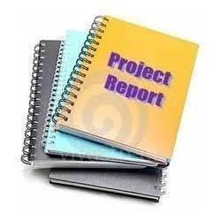Project Report Services